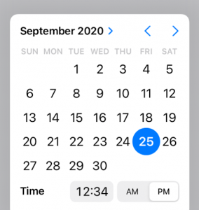 iOS 14 Date Picker Modal